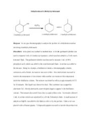 Lab Report IV