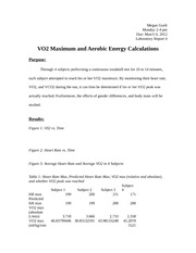 MVS 340 Lab Report 4