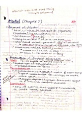 Chapter 8 alcohol notes