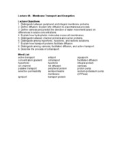 28+ [ 114 Meiosis Study Guide Answers 129351 ]   Mitosis Study ...