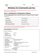 comp 230 labs