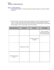 Worksheet2D5FCellular5FRespiration.docx