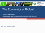 EEP101_lecture23_biofuel