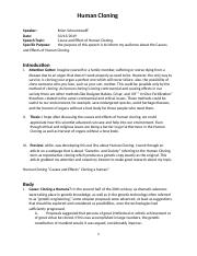 Death essay salesman theme