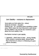 Joint Stability