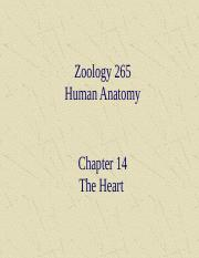 ch 14 - the heart.ppt