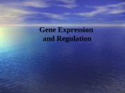 Lecture 10 Expression of DNA (1)