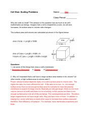 Surface Area to Volume  practice problems - answer key.pdf