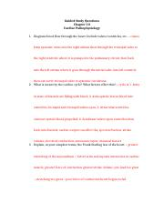 Guided_Study_Questions_cardiac_pathophysiology.docx