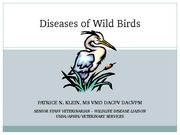 Lecture 6 Diseases of Wild Birds