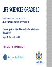 PP2. Organic compounds.pptx