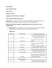 SCIE207_Lab2_worksheet Completed.doc