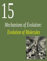 Chapter15evolutionOFmolecules11-7-16 (1)