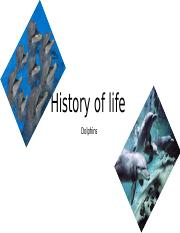 History of life pt 1.pptx