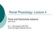 004Copy of The Urinary System2010 lecture4