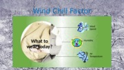 Lab 4-1 Wind Chill Factor