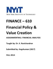 Assignment_A1_-_Financial_Analysis_FINISHED_AND_UPDATED