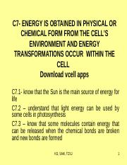 C7- ENERGY TRANSFORMATION.ppt bio