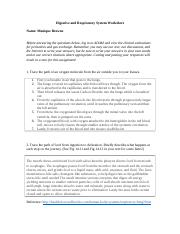 digestive_and_respiratory_system_worksheet_final.docx
