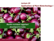 Lecture 24 Biotechnology applications I Sm