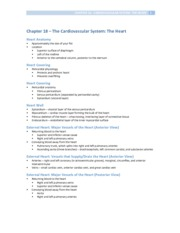 Chapter 18 - Cardiovascular System (Heart)