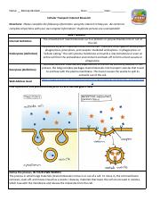Melody Matlack - Cellular Transport Internet Research.docx.pdf