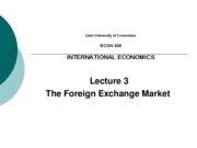 IEU - Lecture 3 - Foreign Exchange Market