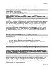 Client Report Mathematics Template(2).docx