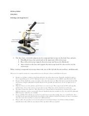 Histology Lab Assignment 1 .pdf