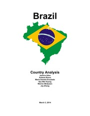Brazil Country Project - CulturalAnalysis