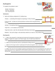 anim_erythropoietin_worksheet.pdf