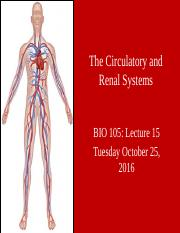 C PerezFall 2016_BIO 105_Lecture 15_The Circulatory and Renal Systems