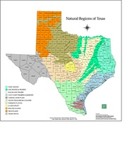 natural regions-counties TX