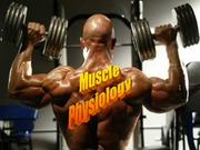 LectureMuscle.white+back+2015