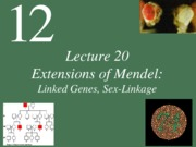 Lecture20_Linkage and Sex ChromosomePOST_Fall13_