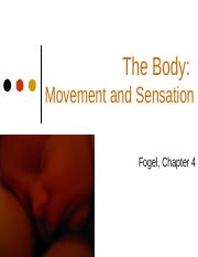 chapter 4- body movement and sensation