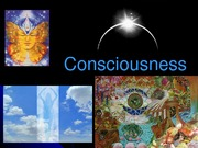 Consiousness