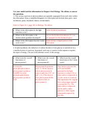 Chapter 10 Worksheet answers photosynthesis.pdf