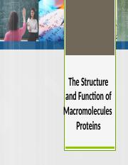 Biomolecules-Proteins (1).pptx