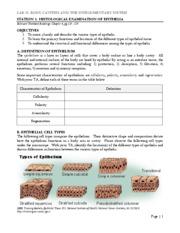 Lab_2_Body_Cavities_and_the_Integumentary_System