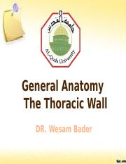 LAB- Thoracic Wall