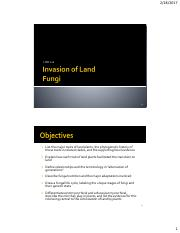 16 Invasion of Land & Fungi