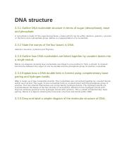 3.3 DNA structure.docx