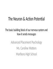 AP Psychology The Neuron & Action Potential_Revised