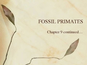 Fossil primates chapter 9