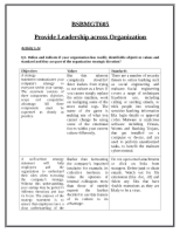 AAAssesment_3_Provide_Leadership_final.docx