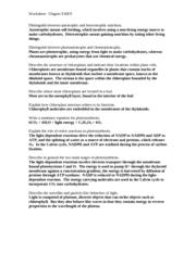 WS8KEY - Worksheet Chapter 8 KEY Distinguish between autotrophic and ...