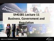 SM0381 Lecture 11 Business, Government and Regulation