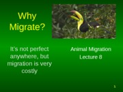 Presentation 8 - Reconsidering the benefits of migration
