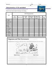 Characteristics of Life Worksheet.pdf   Names Date Class ...